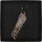 Bloodborne_Icon_Key_Items_Saw_Hunter_Badge.png
