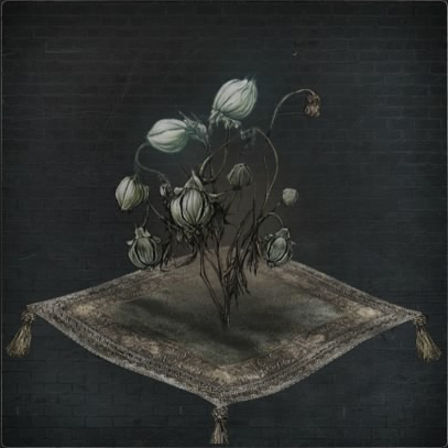 Coldblood Flower Bulb