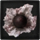 Bloodborne_Icon_Misc_Beast_Blood_Pellet.png