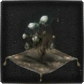 Bloodborne_Icon_Mats_Coldbloob_Flower_Bulb.png