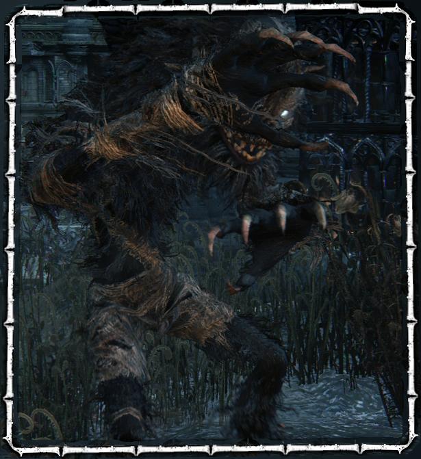 Beast Patient