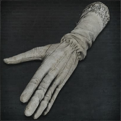 Surgical Long Gloves